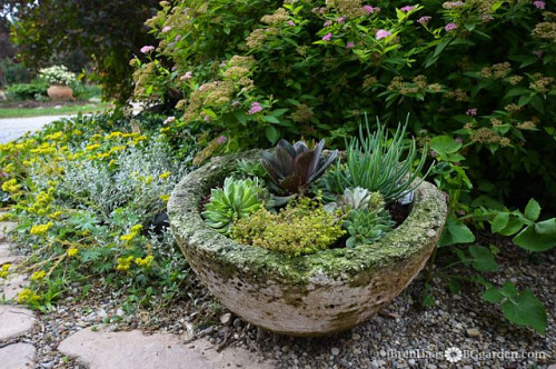 BG_garden/Hometalk.com